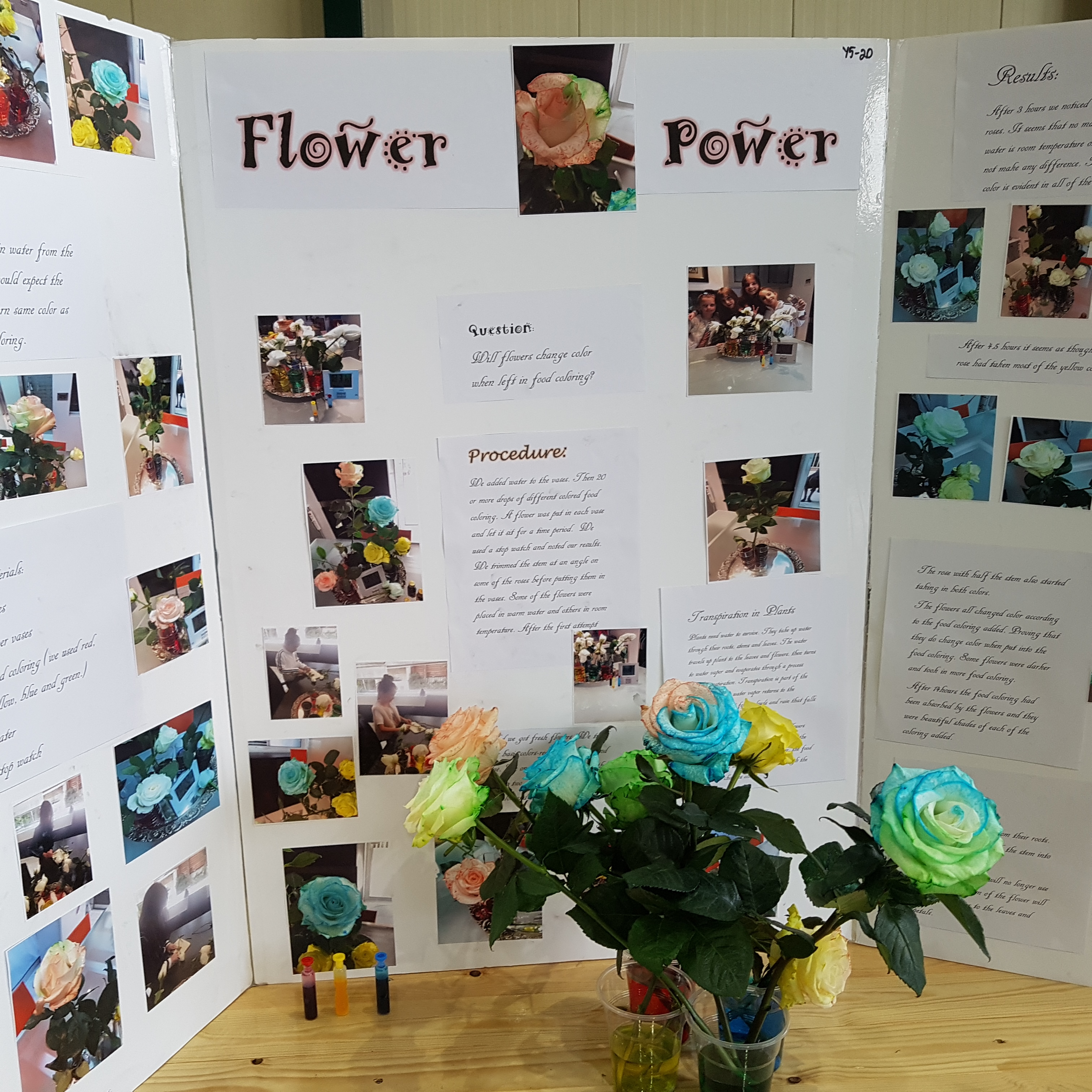 SLC Junior Science Fair | St  Lawrence College